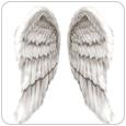 HOWOGE Weihnachten - Weihnachtsengel Flügel